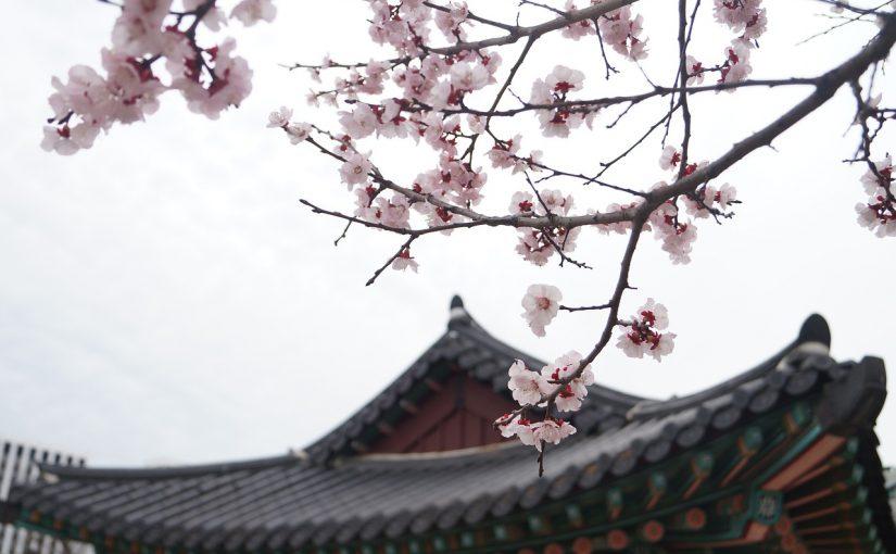 立皇嗣の礼、秋篠宮さまの皇位継承順位1位を国内外に宣言